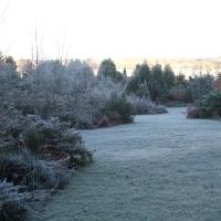 Gardens Winter